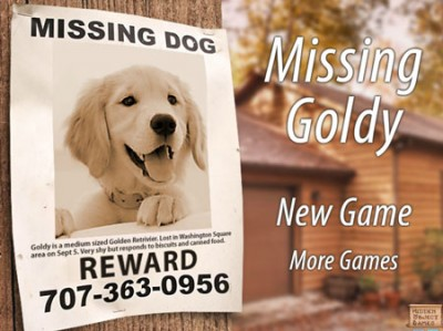 game - Missing Goldy